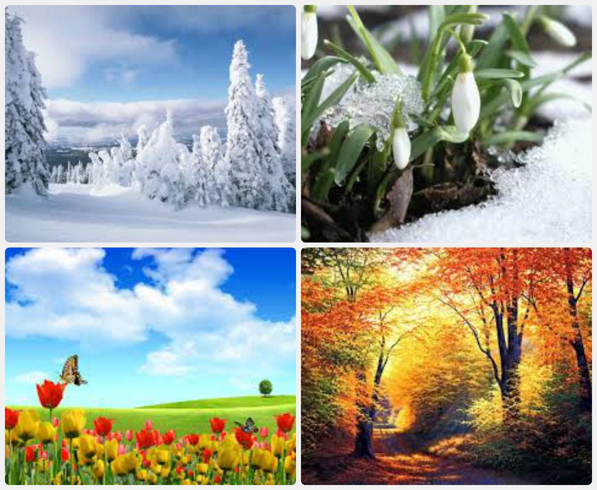 День рождения, картинки зима осень весна