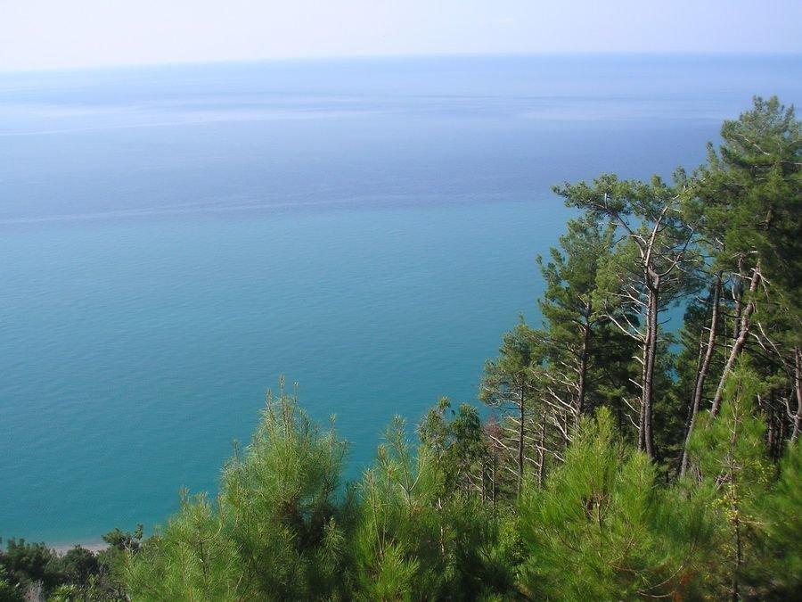 картинки черное море абхазия эротические