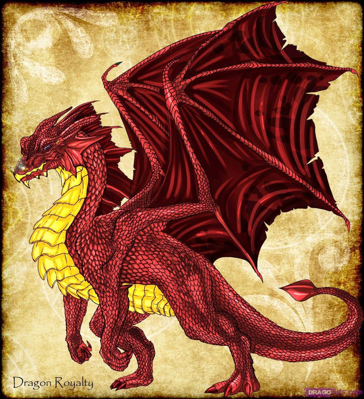 картинки драконов простых чтобы