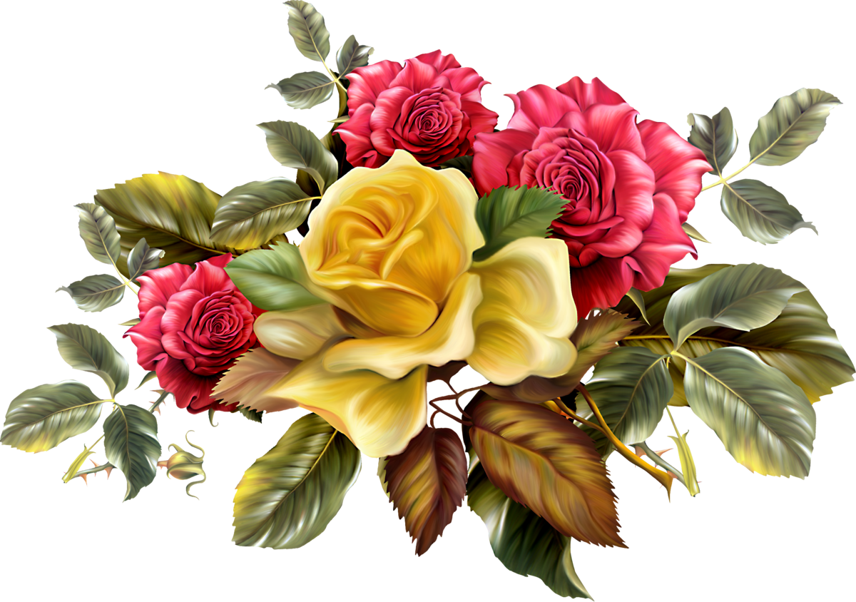 Картинки цветов фотошоп