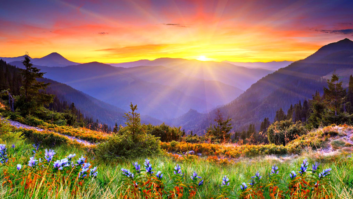 """Beautiful Mountain Sunrise Wallpapers"""