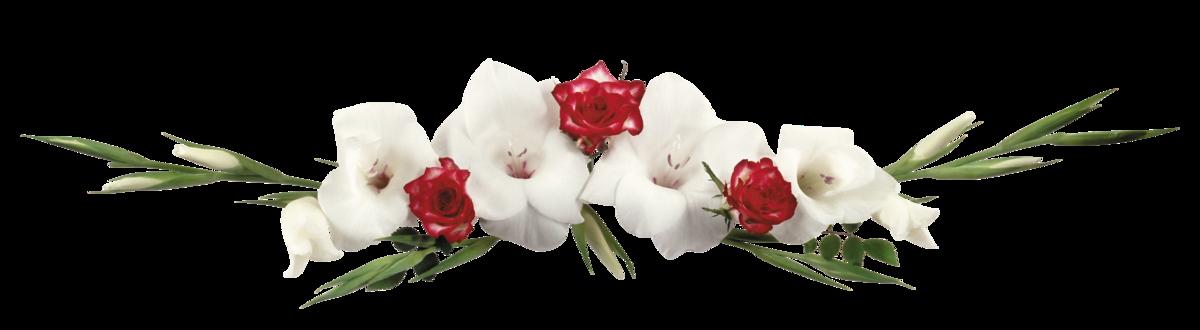 Картинка анимация живые цветы на прозрачном фоне, русалками поздравление днем
