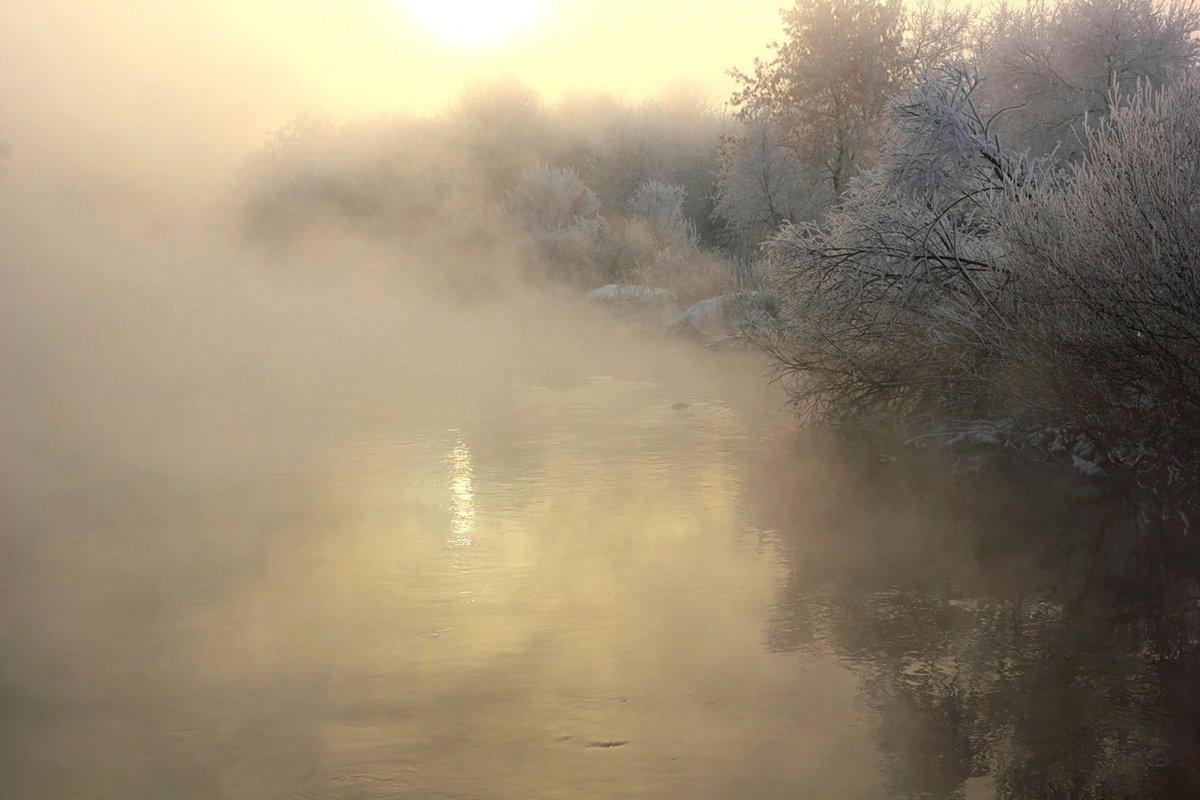 картинки сильного тумана выходу