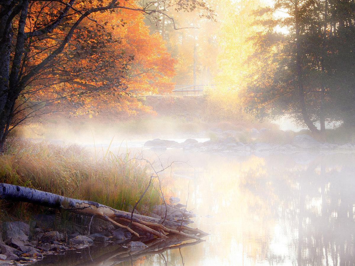 Образуется туман, как правило, рано утром или же по ночам над водоемами и в низинаÑ.