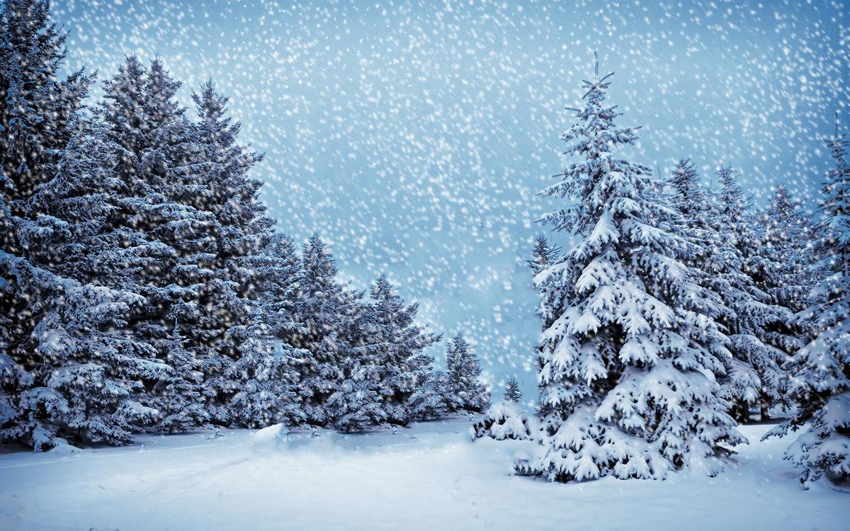 Днем, картинки зима снег с анимаций