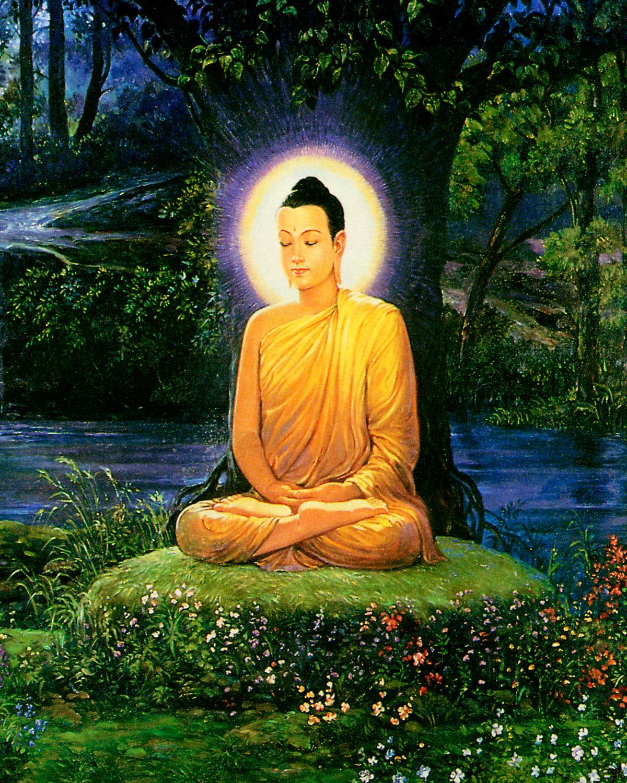 lord buddha education foundation - HD1200×1500