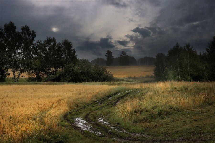Картинки пасмурной природы