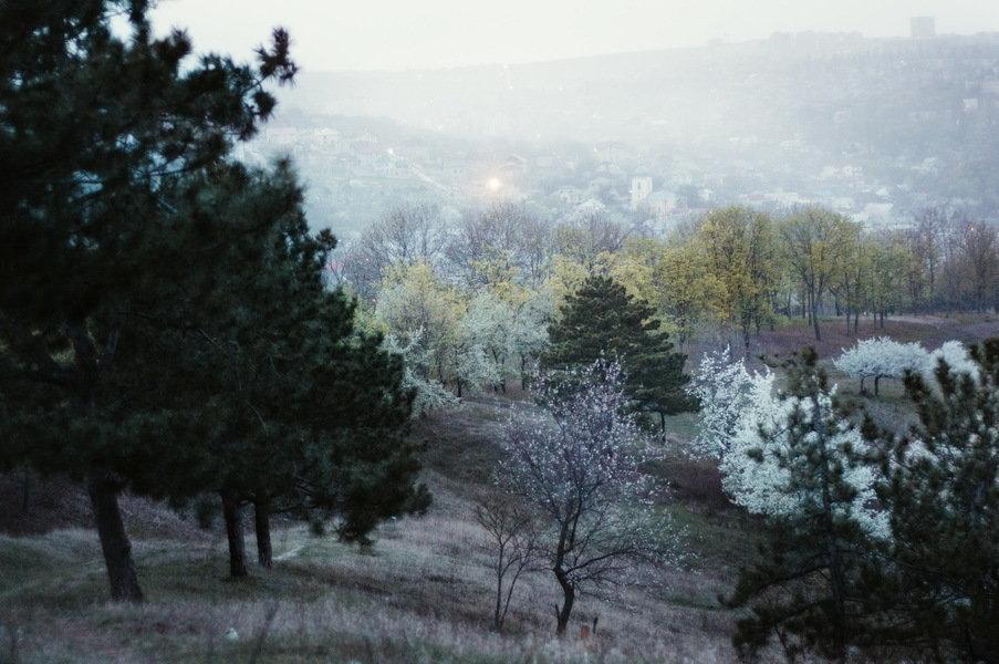 чтобы молдавия что посмотреть зимой уменьшить охват живота