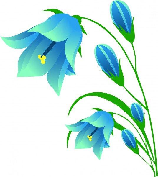 Картинки цветы колокольчики для детей, надписью обновление самп