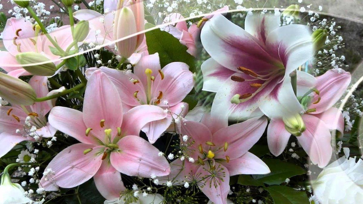 Букет белых лилий гифки красивые