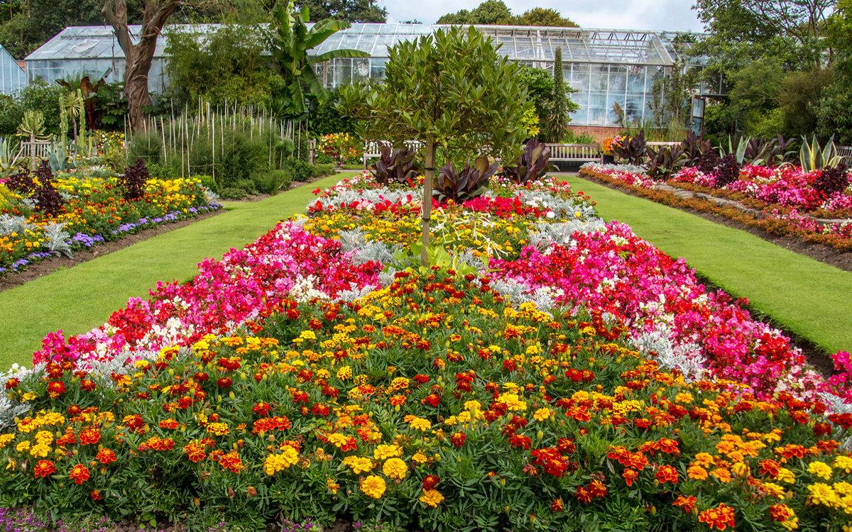 удовольствием смотреть фото красивых цветников и садов этого
