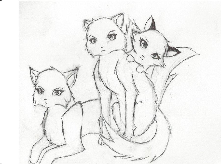 Рисунки карандашом коты воители для срисовки, сделанная своими руками