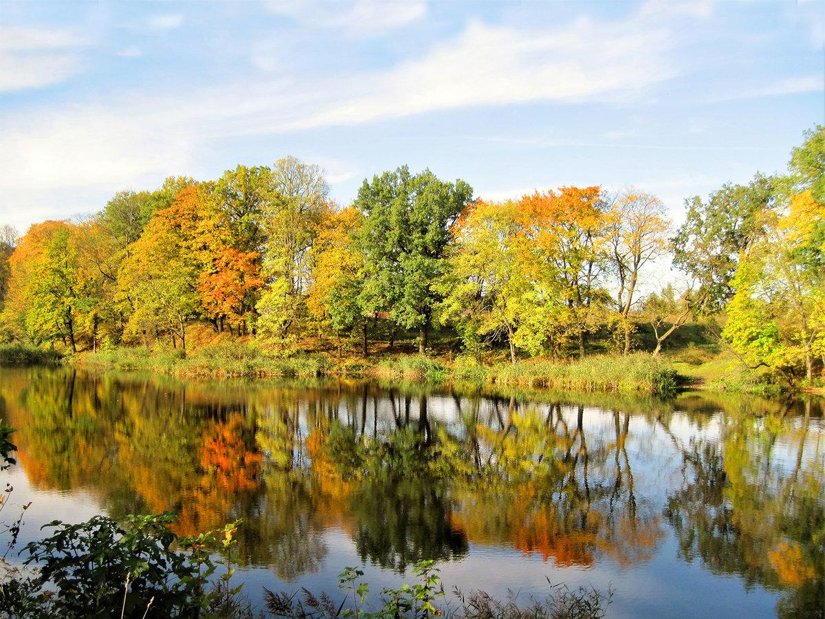 Осени бал золотой...