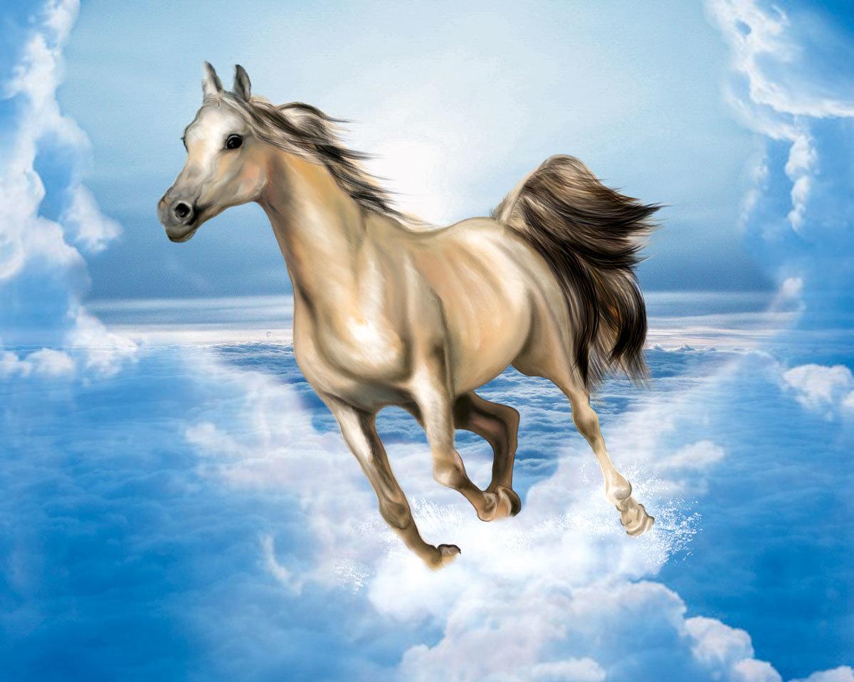 Земляная лошадь картинки