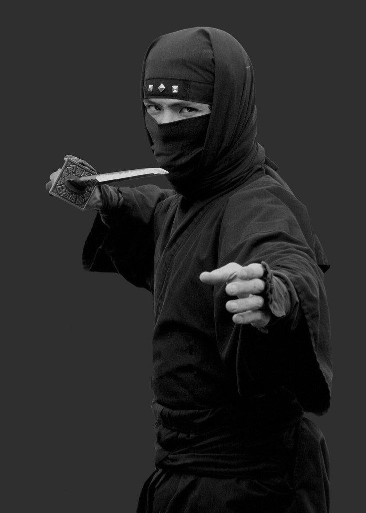картинка серого ниндзя изучили
