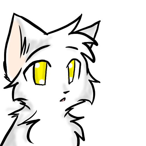 Год фото, рисунки карандашом коты воители для срисовки