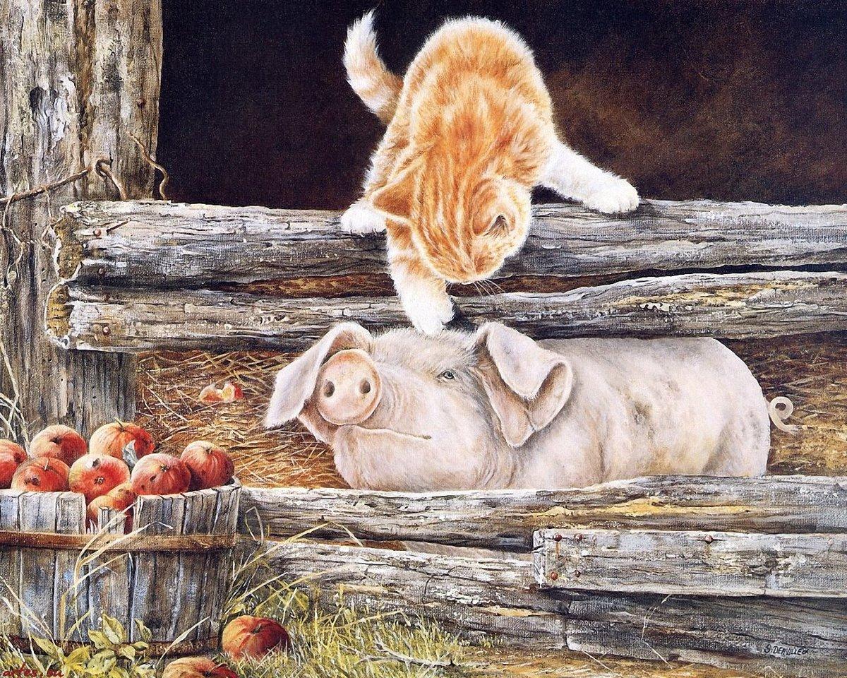 Февраля приколы, картинки с животными красивые и смешные нарисованные