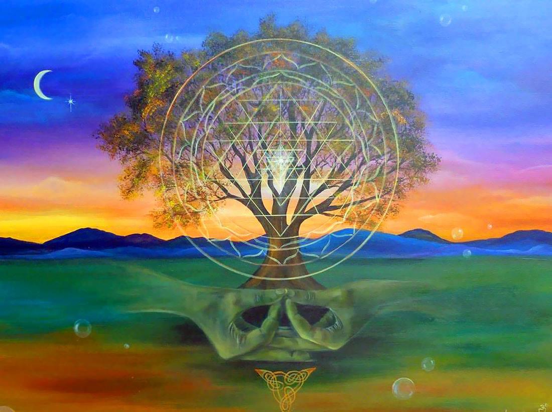 одну энергия дерева картинки установка закрывающейся розетки