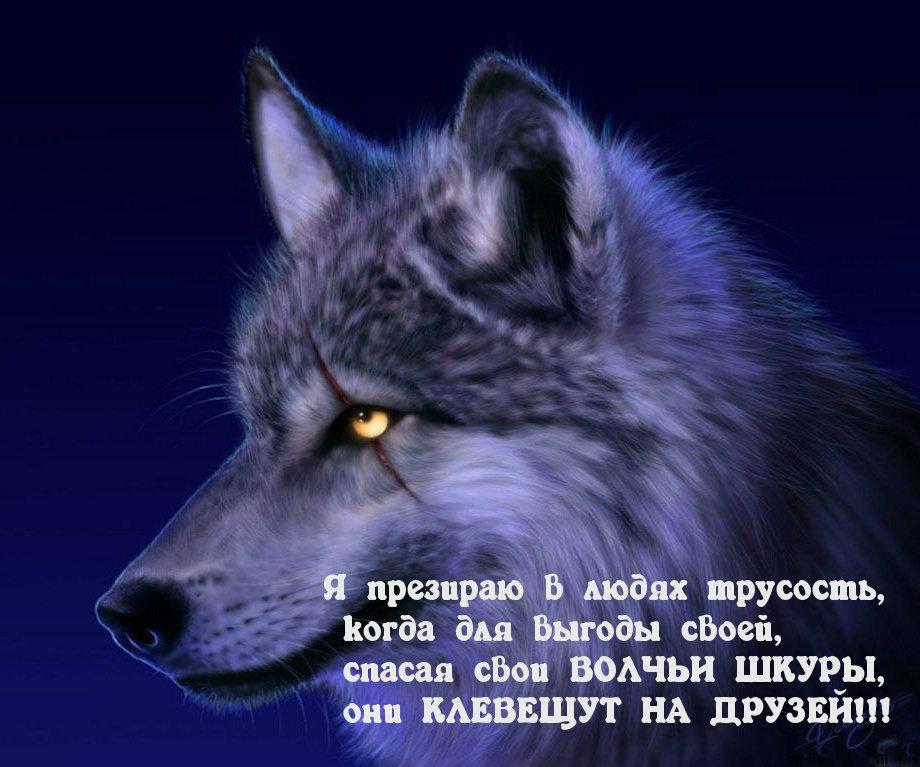 Картинки про волков со смыслом грустные английском стиле