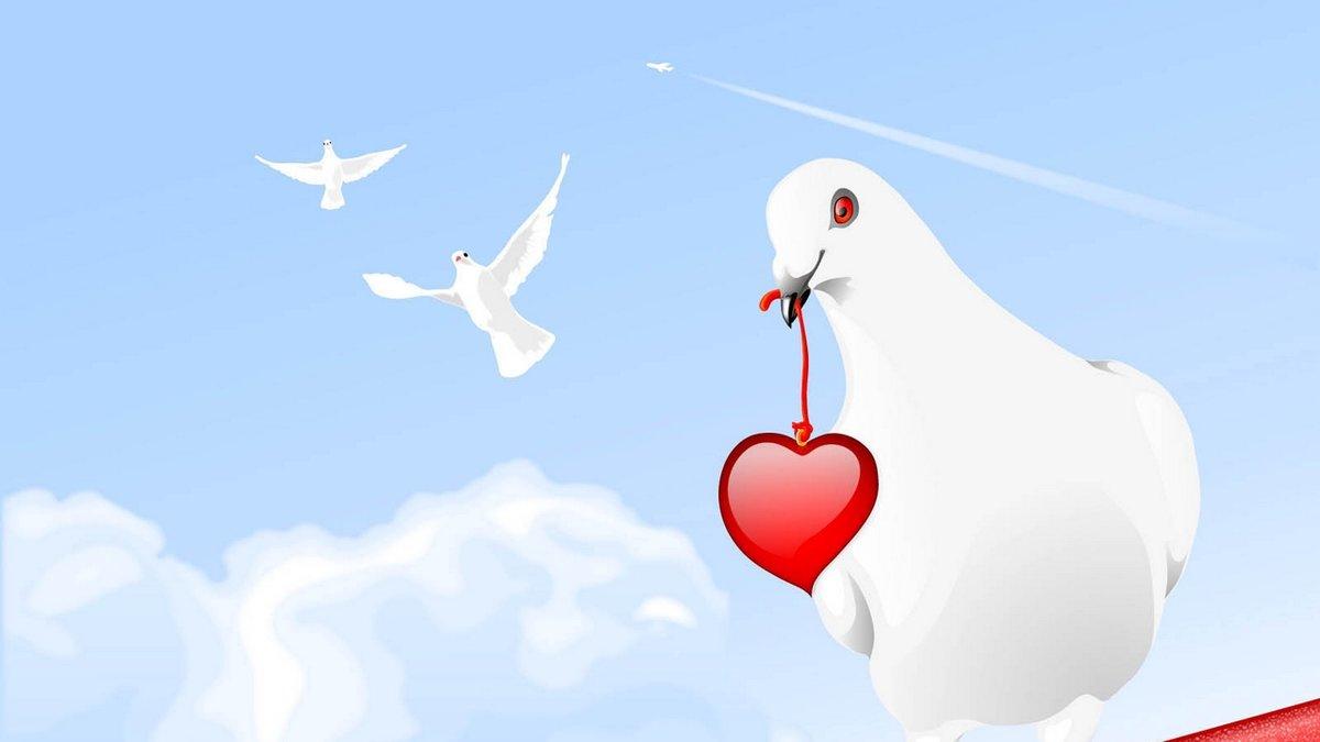 Фон открытки с голубями