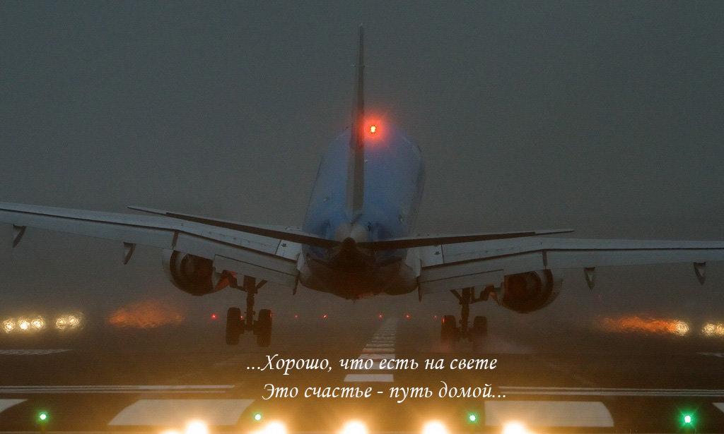 Завтра домой картинки самолет