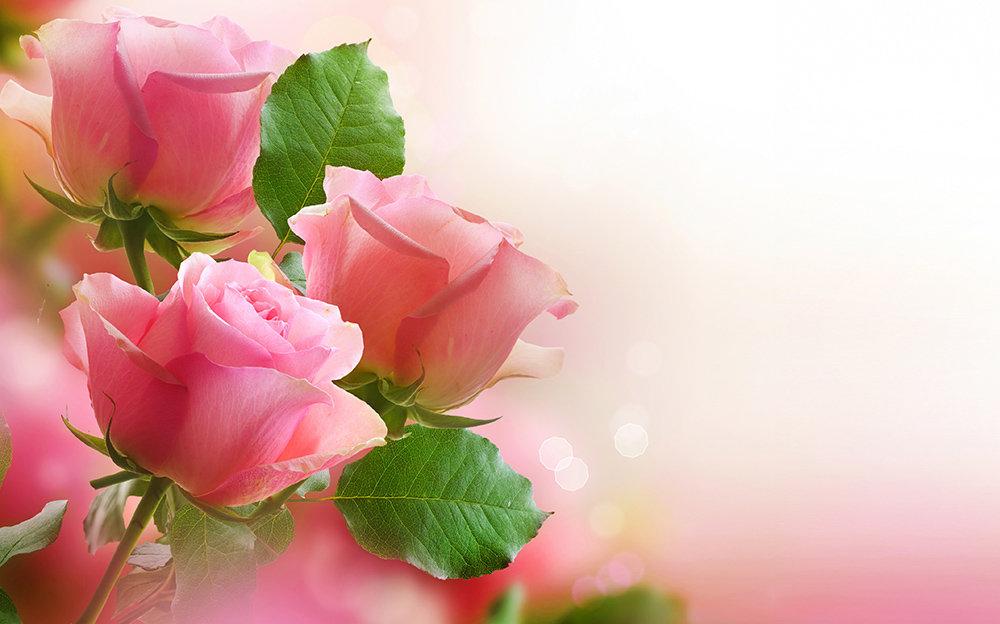 Картинки, открытки девушке с цветами