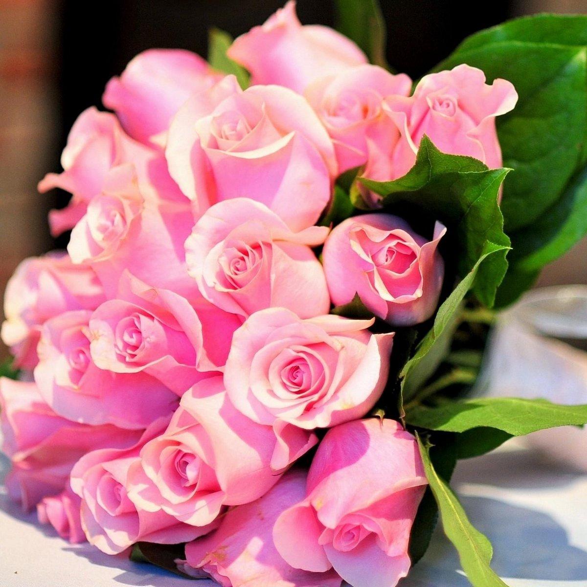 розовые розы фото букеты красивые с бриллиантами открыть свой выставочный
