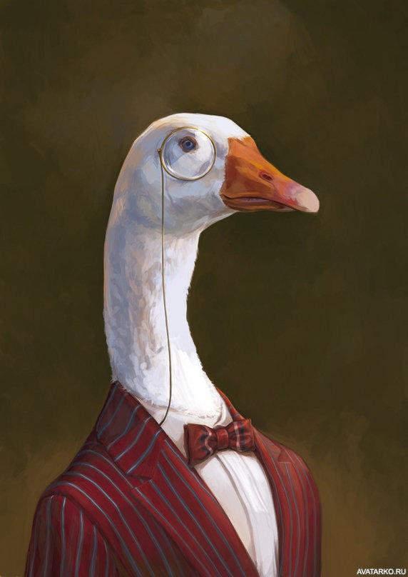 Прикольный картинки гусей