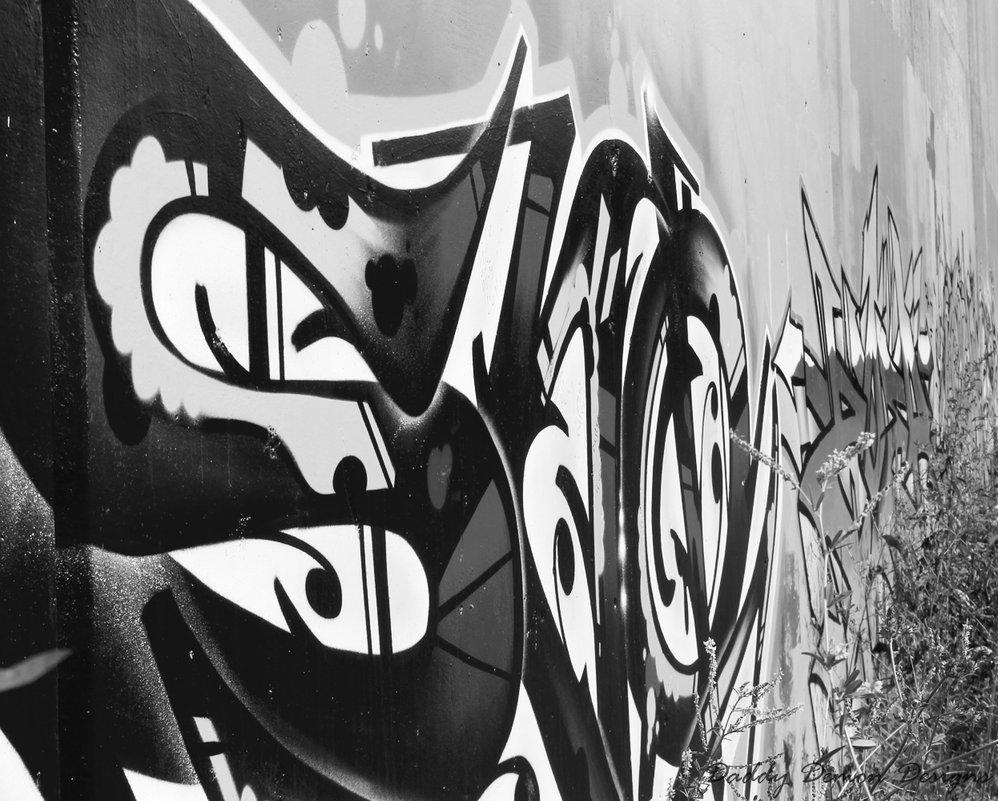 подготовили фотографии граффити черно белые прострел семейства