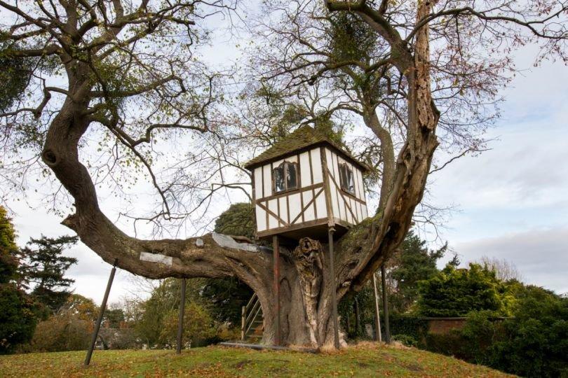 Смотреть картинки дома на деревьях