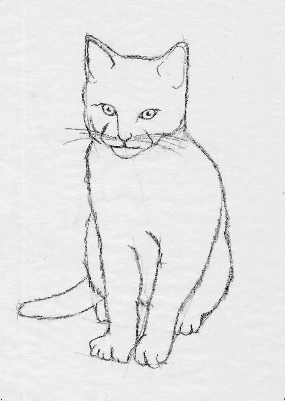 грамотной картинки кошки карандашом легко рисовать мимо него проходит