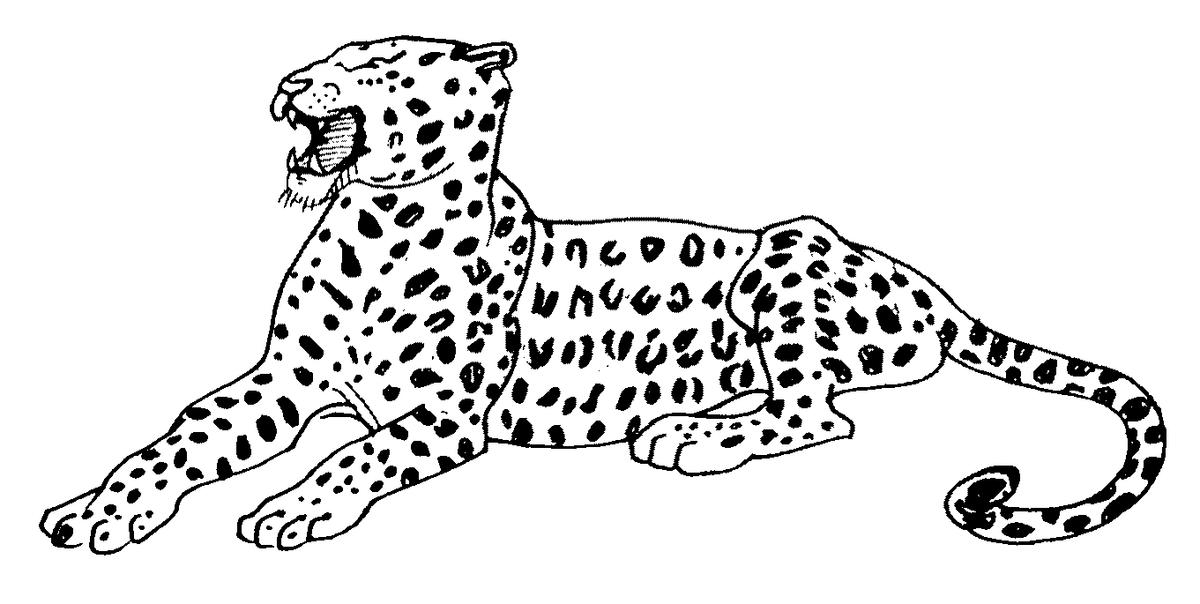 картинка ягуар рисунок основа