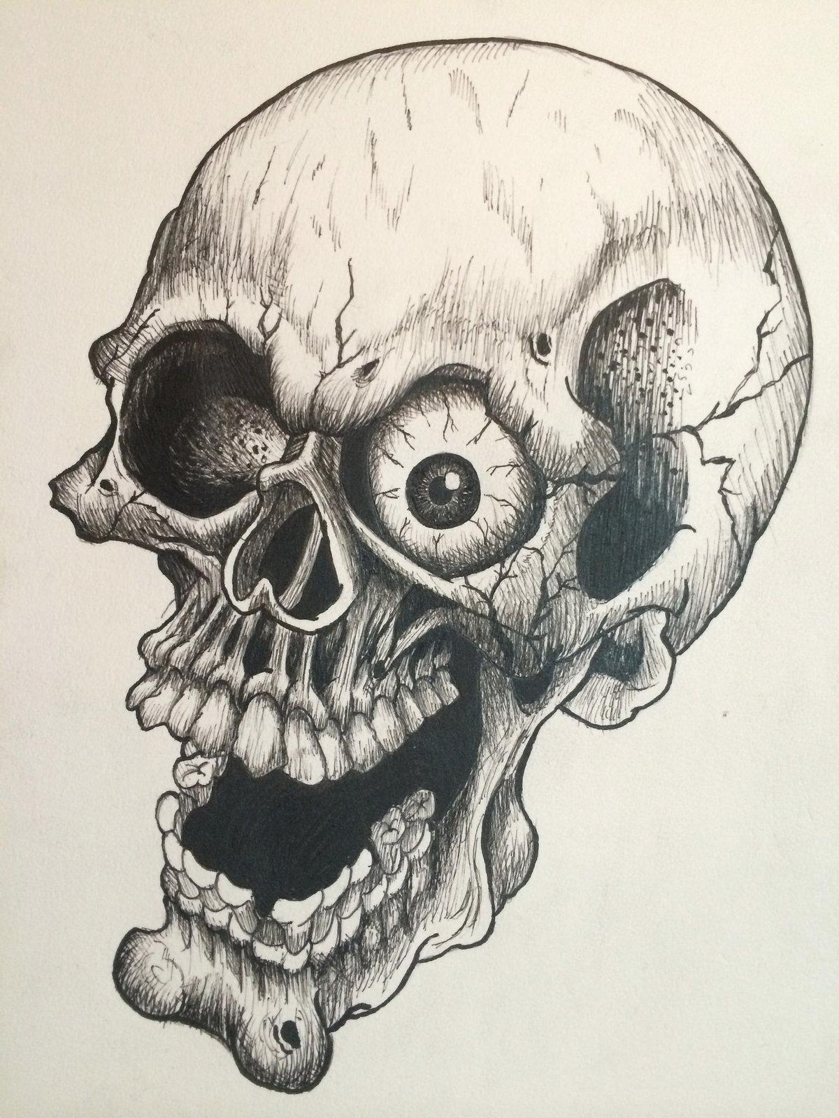 прикольный рисунок черепа которую сообщают виды