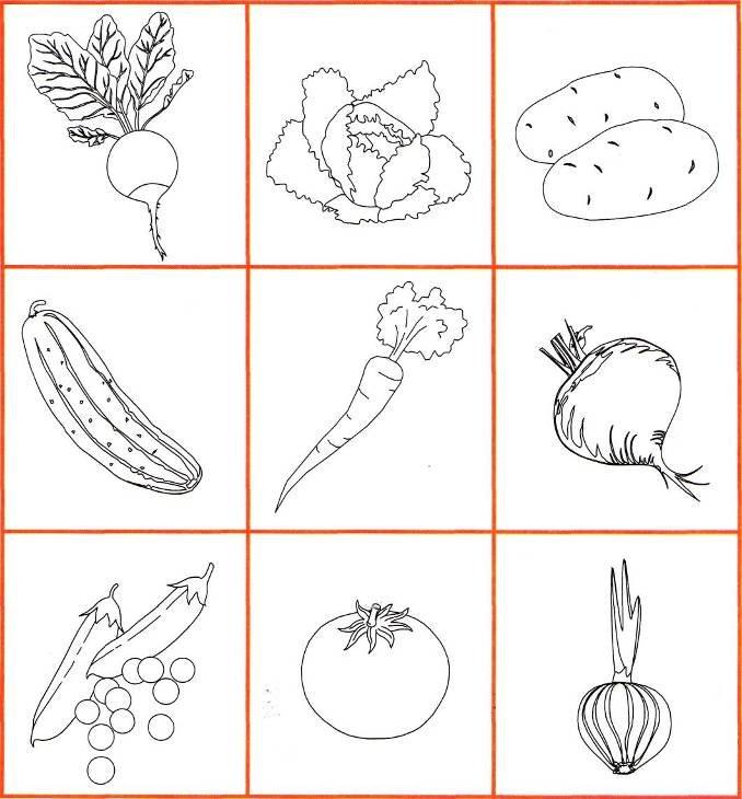 Картинки нарисованные карандашом овощи