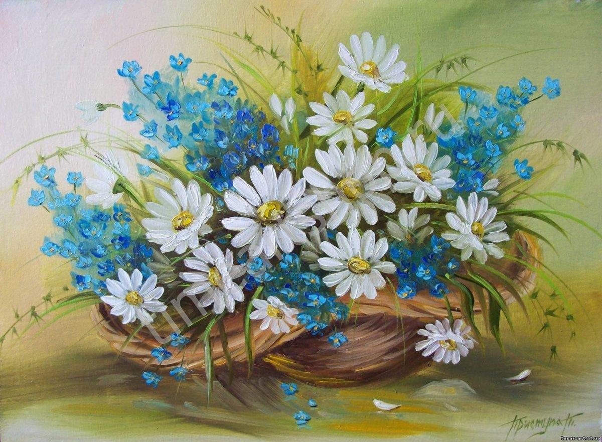 Картинки цветов ромашки незабудки