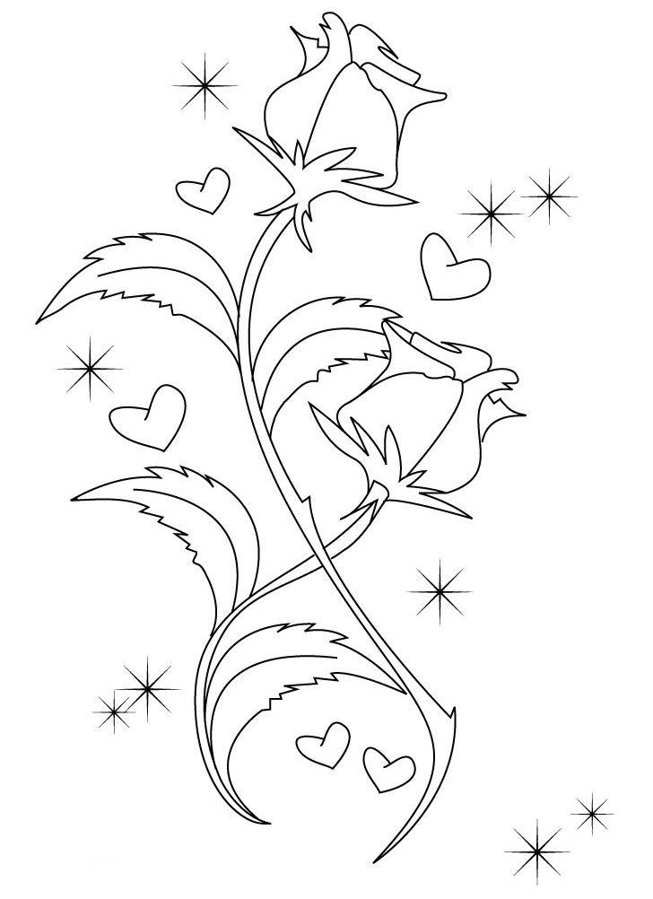 Смешные открытки, цветы для открыток как рисовать