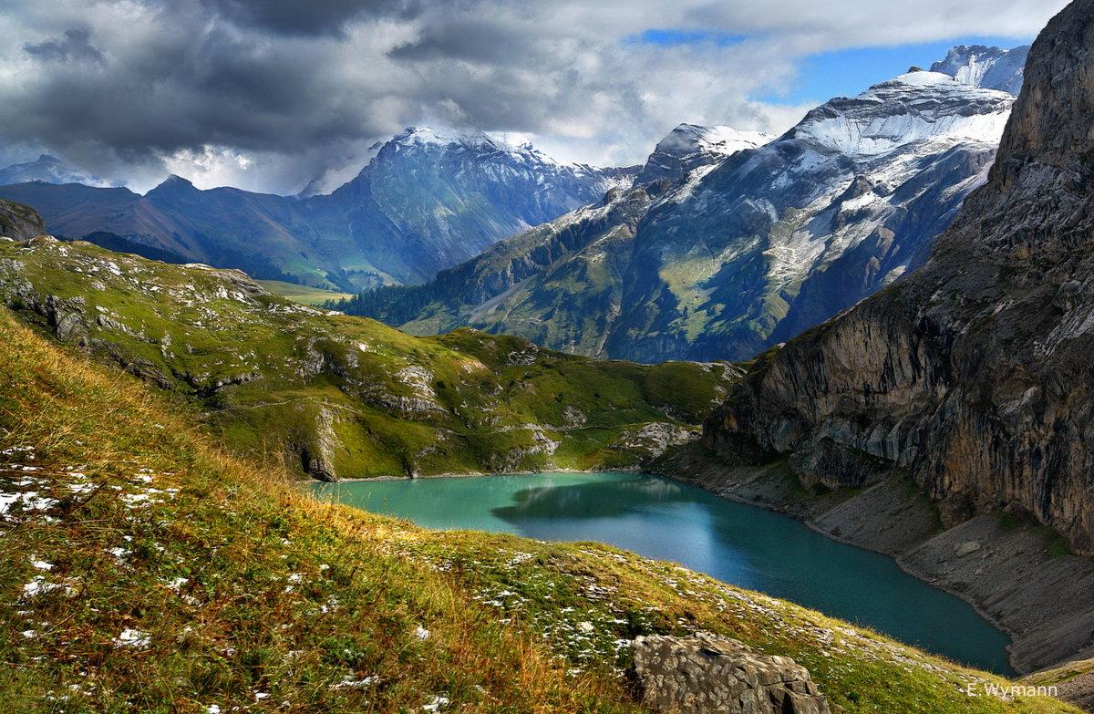травянистый швейцария горы альпы фото фитобаре