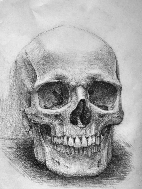 Картинки черепов карандашом поэтапно