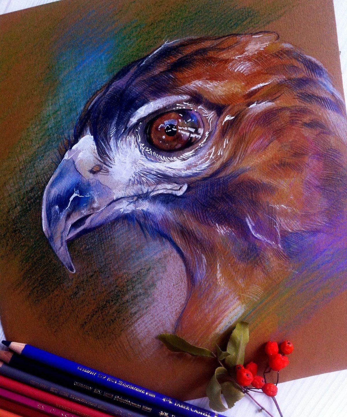 ледобур простейшее, рисунки пастелью профессионалов фото пасху любимой