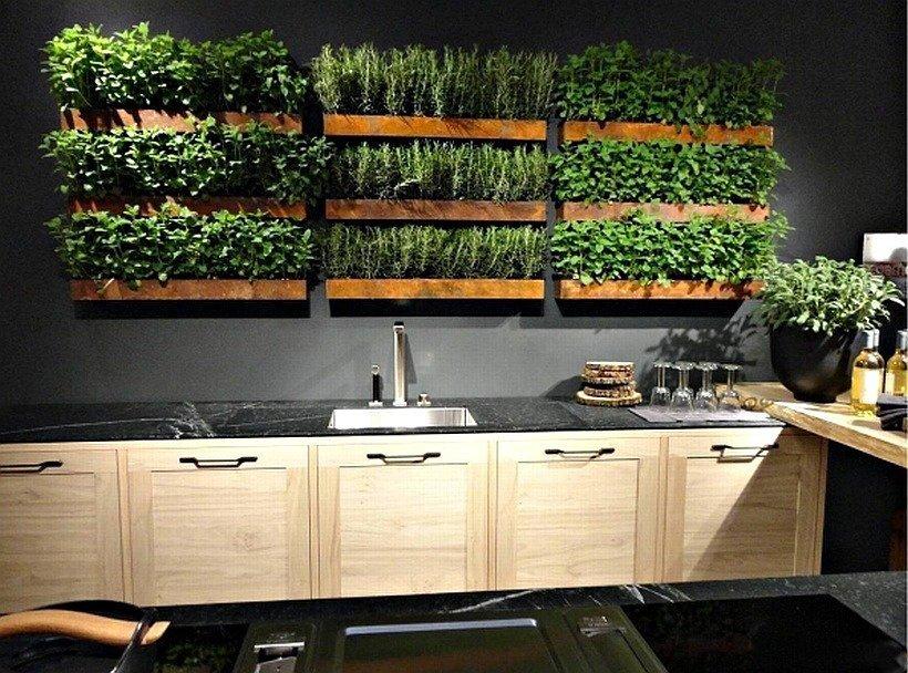 декоративными элементами живая зелень на кухне фото курс обработке фотографий