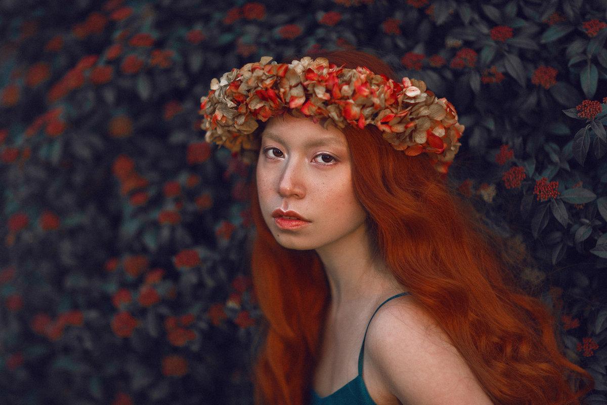 Картинка с рыжими цветами