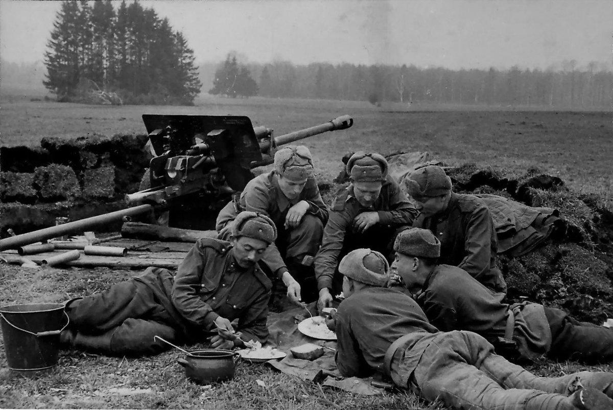 Ночи смешные, картинки войны 1941-1945