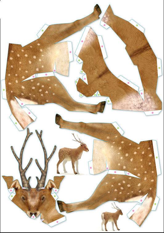 Картинки февраля, как сделать картинки с животными