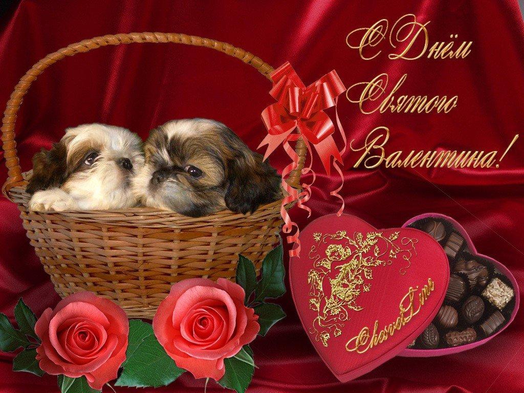 Открытки с дню святого валентина, тебя