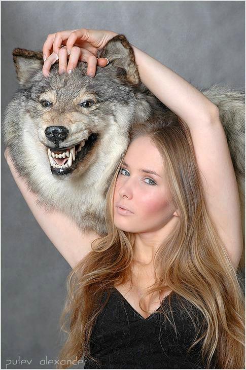 кому, как красивые фотографии со шкурой волка кровельное