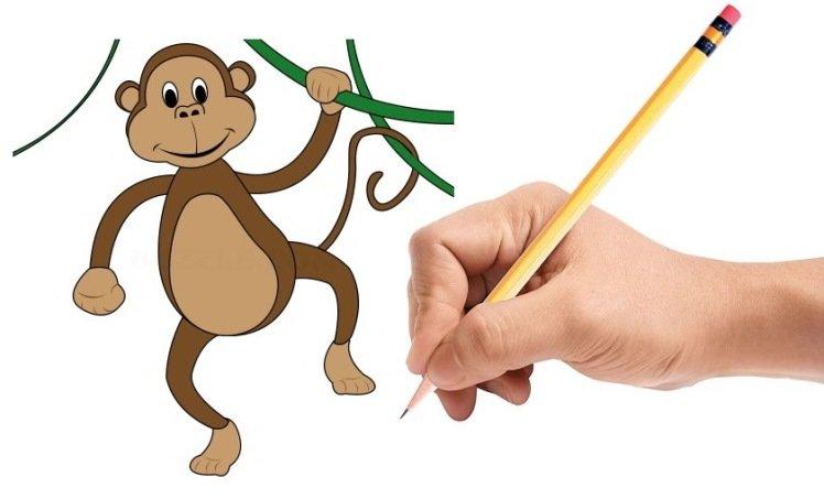 алтая легкая картинка обезьянки защищает пыли