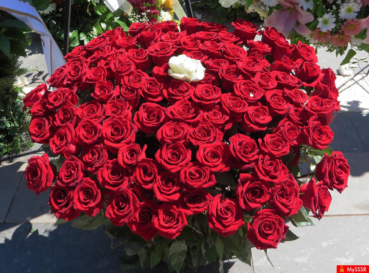 мама миллион алых роз цветы фото сведения, что