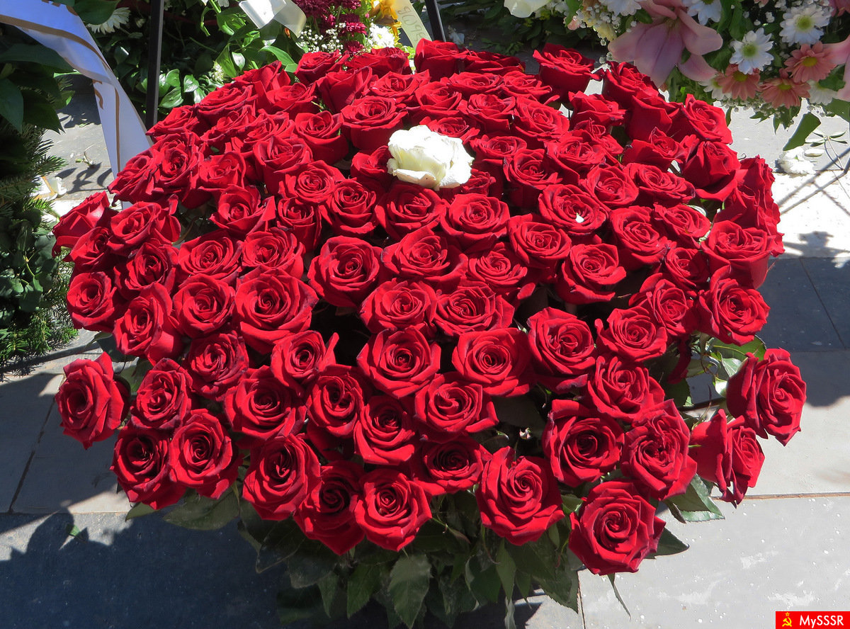 Открытка миллион роз для вас