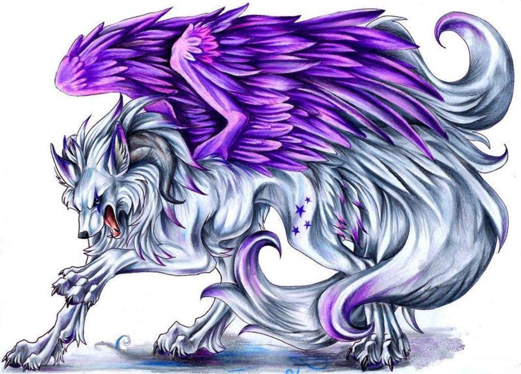 Фиолетовый волк с крыльями картинки