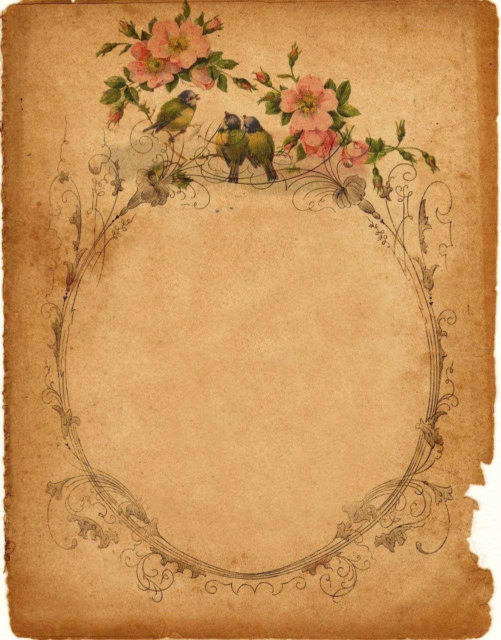 Анимашки нашу, красивые страницы для открыток